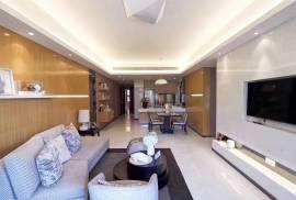 新鴻基國內豪宅 首期5萬(減) 一小時到香港