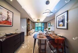 花樣年家天下_深圳 總價250萬 大型商場屋苑 香港銀行按揭 (實景航拍)