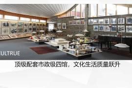 同創華著公館_深圳 鐵路沿線 香港銀行按揭 (實景航拍)