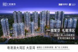 大亞灣仁和美地 首期10萬 大型屋苑 即買即住 香港銀行按揭